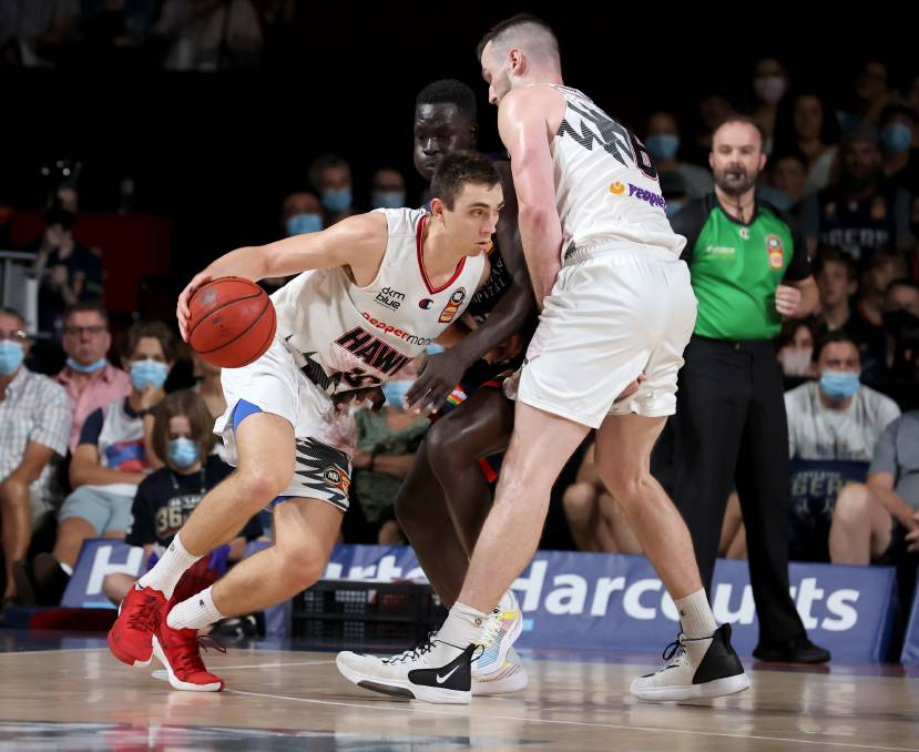 Hawks' Brian Goorjian faced with tough calls on roster for home stretch   South Coast Register   Nowra, NSW